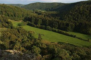 Přírodní park Podkomorské lesy