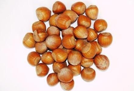 Ořechy » LÍSKOVÉ
